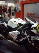 IMGP1650.JPG